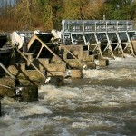 Reading Hydro share offer open – until 14 February 2020
