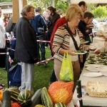 Reading Town Meal: Stallholders welcome!