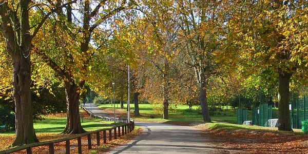 Weekly wellbeing walks at Prospect Park