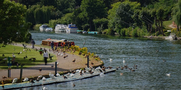 Reading on Thames Festival – free tickets for community groups