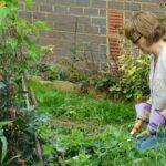 Food4Families is looking for volunteers to grow and distribute fresh produce